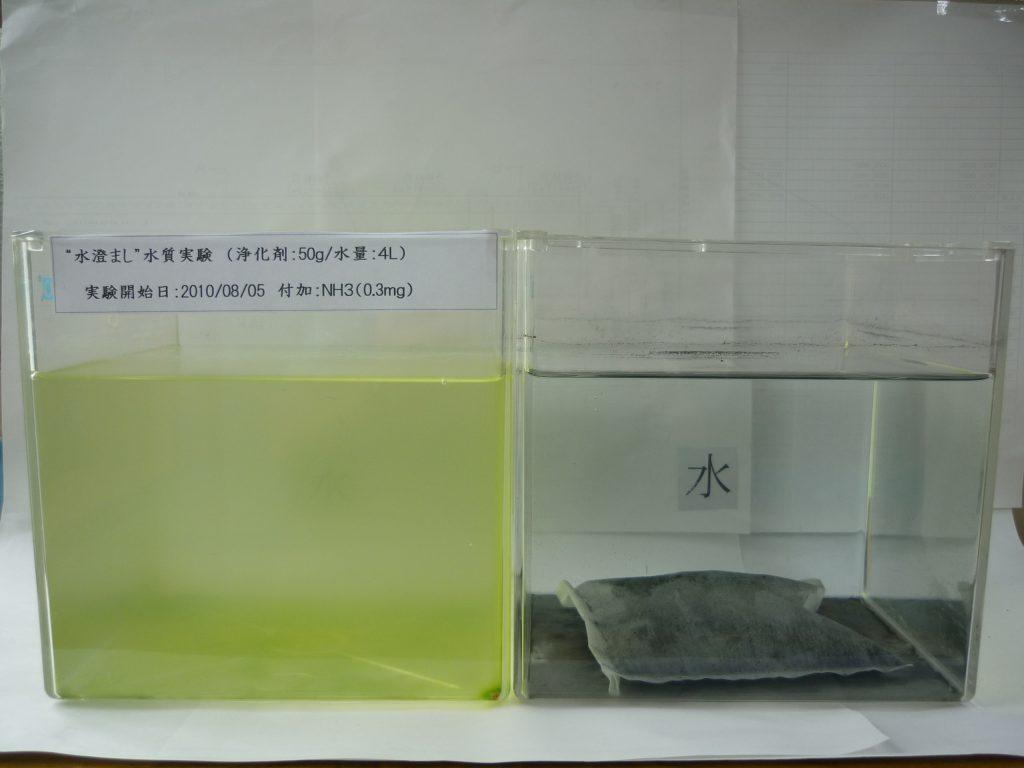 水槽浄化パック比較試験(2010年8月5日)
